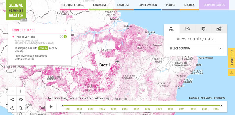 Depletion of the Amazon rainforest is monitored by Forest Watch