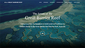 Great Barrier Reef portfolio website