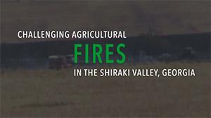 Shiraki Valley fires video