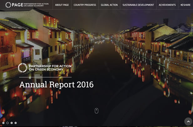 PAGE Annual Report 2016